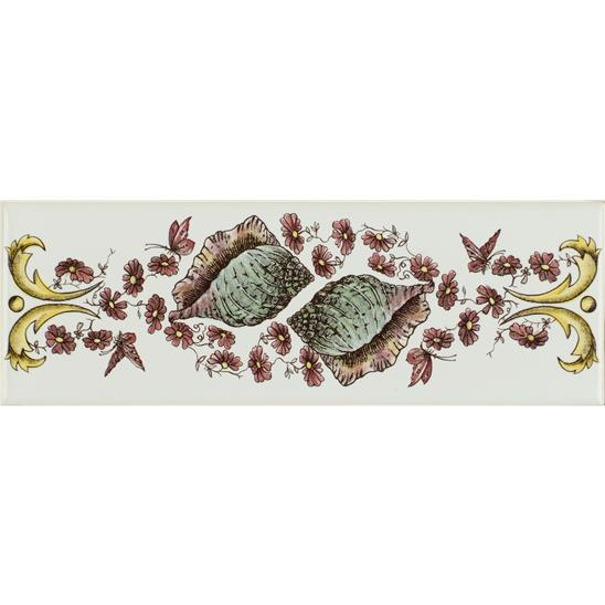Seashells Border Classical Decorative Border on Brilliant White