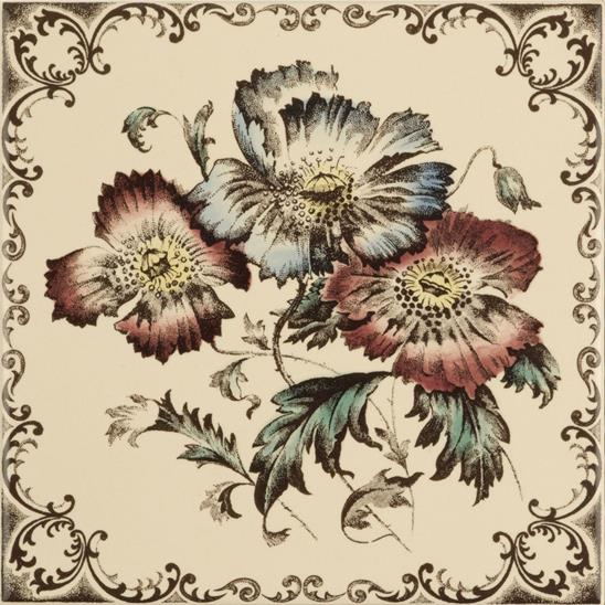 Poppies, Scroll Border Single Tile on Colonial White
